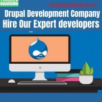 Drupal Development Company  | Web Development Company
