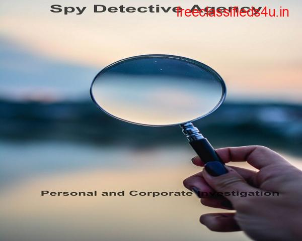 Reason to hire the Private Detective agency in Delhi   Spy Detective Agency