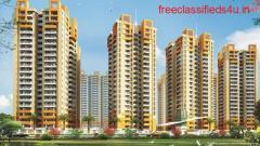 Buy 3 BHK flats in Rajhans Residency Noida Extension. 9711836846