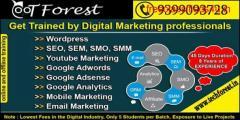 Digital marketing Training in Indore