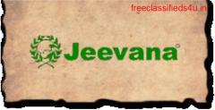 Best Ayurvedic Massage Center in Pune