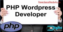 PHP & Wordpress Developer