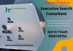 Executive Search Consultant
