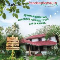 Book a Homestay in Kerala for Best Accommodation, Food & Stay