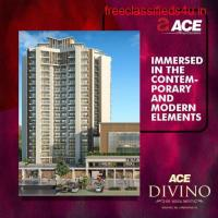 4 bhk Flats in Noida Extension - ACE Divino