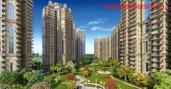 Superb Ready to Shift Apartments in Ajnara Ambrosia 9250001807