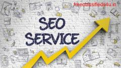 Professional SEO Services in India