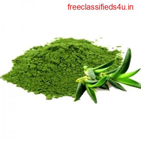 Buy Herbal Powders in Bulk Online From India's Largest Manufacturer