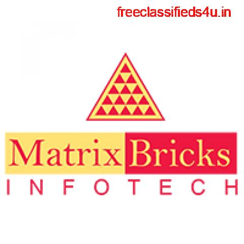 Top Digital Marketing Agencies in Mumbai   Matrix Bricks Infotech