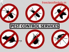 Pest Control Services in east delhi, delhi