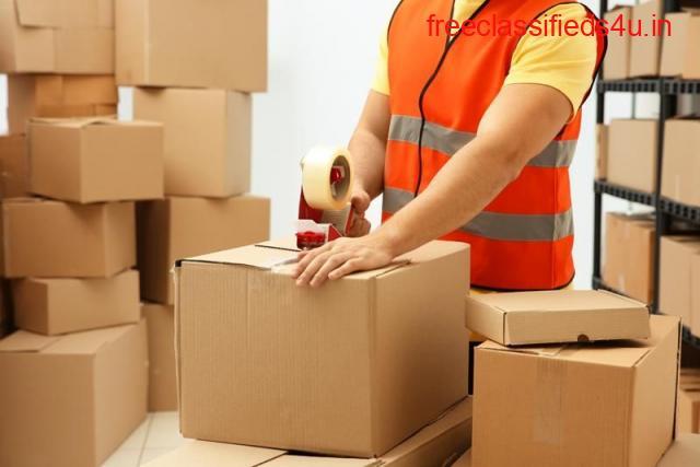 Fedex Courier Gurgaon