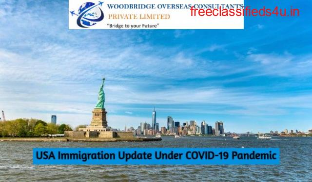 US VISA AND TRAVEL RESTRICTIONS DURING THE COVID-19