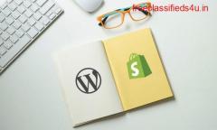 Best Wordpress Development Agency India