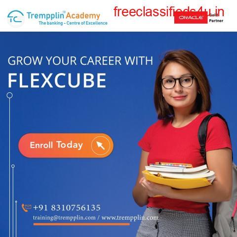Flexcube Training in India