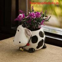 Buy Flower Pot and Planters in India