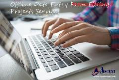 Offline and Online Data Entry Projects