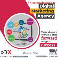 Web Development Company in Indore   Reliable Digital Expert