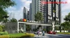 2 BHK Flats for sale in Hyderabad |candeur40|