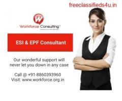 EPF Consultant in Delhi
