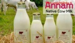 Dairy Farm In Chennai