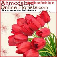 Send Flowers to Ahmedabad Online on the Same Day at Rs.299