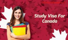Are you looking for student visa?