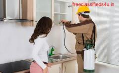 Pest Control Pest Control Services in Hyderabad, India | Advanced Pest Controls