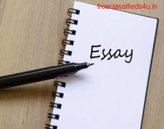 Get your Unique and Engaging Essay from Professional Writers