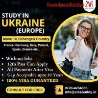 Best Immigration Consultants | Visa Buddy