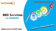 Search Engine Optimization Services From Seoteam247   Best SEO Services in Florida USA/CA