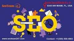 Seoteam247 | Florida, Best SEO Services in USA & CANADA and Branding Agency