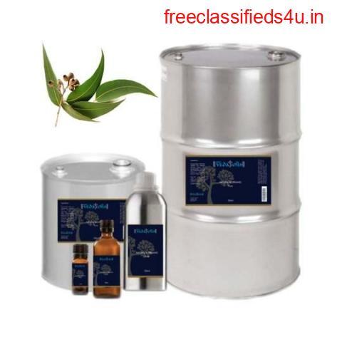 Buy Eucalyptus Essential Oil Online at VedaOils