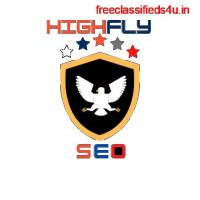 We Are The Best Web Design Company in Lucknow - Highflyseo
