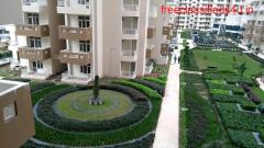 Apartment for Rent in Royal Nest | Rent Royal   Nest Flats