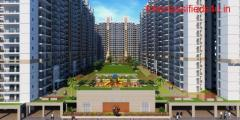 Apartment for Rent in Gulshan Bellina | Flats for Rent in Gulshan Bellina