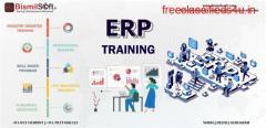 ERP Training In Noida