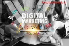 Freelance Digital Marketing Consultant India