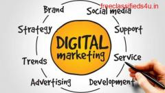 Local SEO Services Company in India | Web Cures Digital