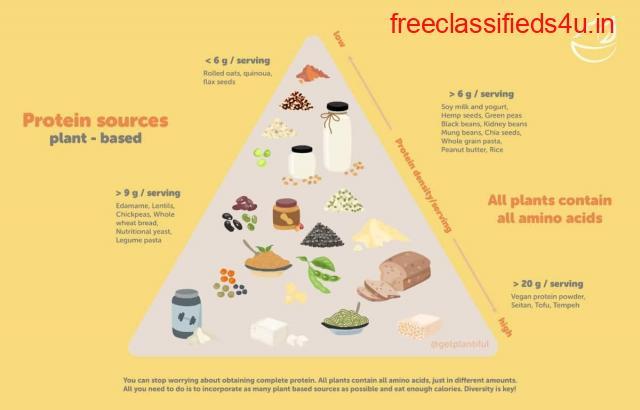 Protein High Vegan Foods