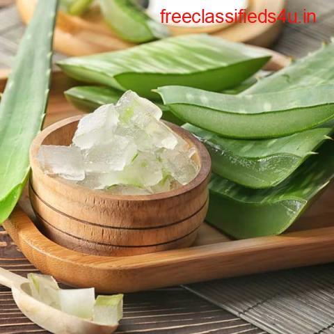 Buy Pure Aloe Vera Gel Online at Best Prices in India