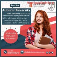 consultant for abroad study